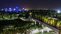 Gardens by the Bay, Singapore -7446 (Matty 8o) Tags: singapore outdoor outdoors vacation holiday travel travelling canon canon700d 700d lens dslr photography photos photo photograph photographer marina bay marinabay marinabaysands canon1855mm 1855mm 1855 beautiful light lights night nightshots shot dark view long exposure longexposure city love gardens gardensbythebay asia tourism tourist nightphoto nightphotography hobby