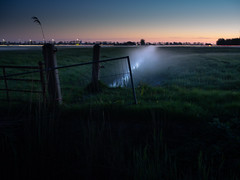 Mist [explore] (gezipt1) Tags: olympus omd em10markii photography mft m43 mzuiko rural hiking water mist groningen fog night stars grass