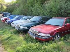 Even more Rovers (quicksilver coaches) Tags: rover mg 200 216 218 220 tomcat 620ti 800 820 825 sterling brm zr r881ebu n217uvc s73rnp t571wox kd51afz l773fon m846ago v227djm