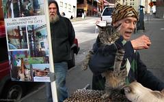 Seattle: cat man (Henk Binnendijk) Tags: street candid pikeplacemarket farmersmarket publicmarketcenter seattle washington northwest people animals