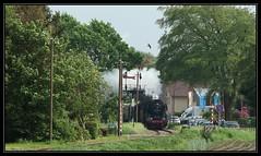 17/18 VSM 50 3654-6 - Lieren, 10-05-2018 (dloc567) Tags: vsm veluwschestoomtreinmaatschappij lieren beekbergen trein zug zuch train br50
