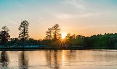 Sunset, Hawley lake (Sajivrochergurung) Tags: nature trees lake sunset evening goldenhour