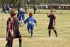 Goal Celebration (Marvin 1963) Tags: australia nsw lakemacquarie canon eos 50d tamron football