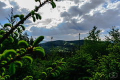 Briloner Kammweg (Ya!l) Tags: nikond3300 nikonflickrtrophy nikon nrw natur nature brilon briloner kammweg rothaarsteig wandern hiking himmel westfalen wolken clouds
