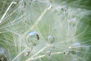 Perles de cristal...! - Crystal beads ...!