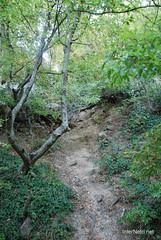 Крим Хрестова гора InterNetri  Ukraine 2011 091