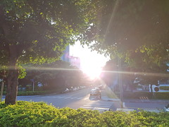放慢腳步,有時會發現工作的地方也有她美的地方。 (廖法蘭克) Tags: samsung samsungs8 s8 mobile photograph mobilephotograph taiwan hsinchu 臺灣 新竹 手機攝影 手機 photographer photography sunny frankintaiwan company 下班 offwork