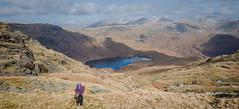 Climbing Blea Rigg (Walks in Dreams) Tags: blearigg easedaletarn landscape kevincjpoole lakedistrict mountains walking worldheritagesite cumbria england mountain