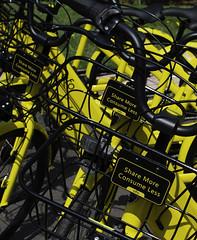 YellowBikes_SAF7769 (sara97) Tags: copyright©2018saraannefinke missouri photobysaraannefinke saintlouis bike yellow ofo