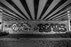 365 #141 (PeteMartin) Tags: amsterdamsebos bridge bw graffiti amstelveeen netherlands nld