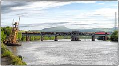 High Tide at the Swing Bridge (Welsh Gold) Tags: 60091 barryneedham 6b13 robeston westerleigh murco oil tarin neathriverswingbridge skewen southwales