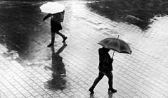 April day (Guido Klumpe) Tags: rainy rain umbrella wasser water spiegelung mirror reflection leonegraph streetphotographer streetphotography story urban spontan spontanious candid unposed human street 2018 europe germany deutschland city stadt monochrome bw blanco negro bn sw schwarz weis black white panasonicgx80 panasonic1235mmf28 mft microfourthirds hannover hanover