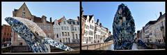 The Bruges Whale (johan van moorhem) Tags: belgium belgique belgië flanders vlaanderen westvlaanderen bruges brugge spiegelrei triënnalebruges2018 brugeswhale debrugsewalvis skyscraper studiokca