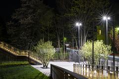 At Night in the Park (stopdead2012) Tags: night dark longexposure park landesgartenschau sachsen oelsnitz germany trees stairs bridge streetlights