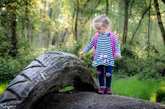 IMG_0907-1 (Wayne Cappleman (Haywain Photography)) Tags: wayne cappleman haywain photography farnborough hampshire rainbow baby daughter child portrait