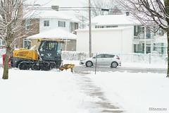La charrue (guysamsonphoto) Tags: guysamson sonyalpha6300 rokinon50mmf14 snow neige victo victoriaville