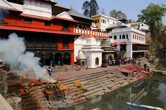 2018-03-24 (Giåm) Tags: kathmandu kathmandou katmandou katmandu काठमाडौं pashupatinath pashupatinathtemple पशुपतिनाथमन्दिर bagmati kathmanduvalley nepal नेपाल