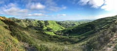 Really California (matthewolsonphotography.com) Tags: iphone iphone7plus hills greenhills green california californiacoast spring panorama landscape grass field sky road