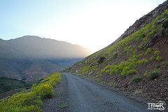 Sunrise Atlas (morbidtibor) Tags: africa northafrica morocco desert atlas atlasmountains toubkal trekking hiking