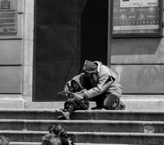 Toledo (deytano velde1) Tags: dey calles toledo viajes nikon 5100 gente barrios puertas tren
