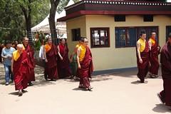 _MG_6863_ss (ziggy@palyulian) Tags: palyul namdroling nyingma monastery his holiness penor rinpoche relic stupa ceremony karma kuchen khenpo mysore tibetan buddhism mugsang pema norbu ritual golden temple
