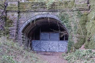 Walnut Tree Tunnel North Portal, March 2017