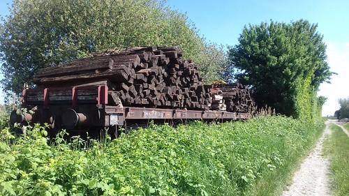 Wagons op het spoor tussen Baarland en Oudelande