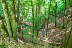 AhrSteig 4 (rbrands) Tags: wanderung arhtal eifel wanderer ahrbrück rheinlandpfalz deutschland de