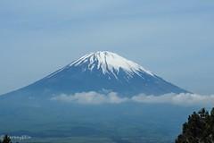 Mt.Fuji (Yorkey&Rin) Tags: 2018 bluesky em5markii gotenba japan kanagawa may mtfuji olympus olympusm14150mmf4056ii otomeparking rin v5110144 乙女駐車場 神奈川県 青空 日本 富士山 snow