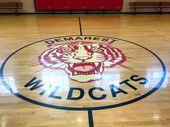 #Wildcats (PartiLife) Tags: basics