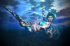 Sparkling Depths (LiangScorpio) Tags: fallengodsinc fish water ocean blue underwater poem