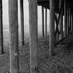 Beach Life thumbnail