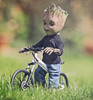 Groot's Bike Ride (Jezbags) Tags: groot bike ride guardiansofthegalaxy guardians green grass garden macro macrophotography macrodreams canon canon80d 80d 100mm closeup upclose marvel marvelstudios bicycle toy toys hottoys actionfigure