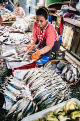 DSCF5040 (Rico Pfirstinger) Tags: fujifilm fujixsecrets xpertcorner xe1 xf1855mmf284rlmois thailand market food fish