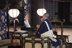 Chanting Monk (Patrick Vierthaler) Tags: japan kyoto buddhism buddhismus monk mönch chanting pure land jodo sect school jodoshu ritual daily 日本 京都 お坊さん 仏教 お経 念仏 称える 姿 浄土宗 日常 chionji hyakumanben 知恩寺 百万遍