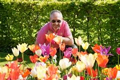 DSC08514 (PeterazziMuilman) Tags: keukenhof keukenhof2018 tulipsgarden flowergarden lisse colorful bulbs romanceatkeukenhof sony sonya7r3 alpha7rm3 a7r3 ilce7rm3 ilcea7r3 sel2470gm sonyfe2470f28gm sonyfe282470gm