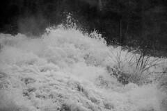 DSC02596 (Moodycamera Photography) Tags: sonyimages sonyalpha sonya6000 sonycamera ontario canada moodycamera bradrobb1 exploring discovery roaming wandering travel sony sonyphotogallery sel18105g north bay waterfalls creek runoff spring duchesnayfalls northbay