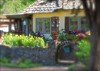 Cottage In Carmel (MPnormaleye) Tags: cottage pots flowers gate lantern stone wall utata photomatix california coastal carmelbythesea