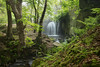 Spring Falls (J C Mills Photography) Tags: peakdistrict derbyshire matlock lumsdale falls waterfall industrialheritage abandoned spring landscape woodland mist ligght green leaves outdoor