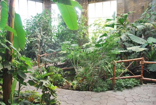 Екзотаріум Ботанічного саду імені Гришка, Київ InterNetri  Ukraine 05