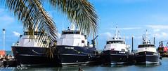 Sites of Trinidad and Tobago (WRITING IN LIGHT) Tags: trinidad tobago sites boats birds nest ants las cuevas