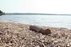 Rutland_016 (Adam.Eales91) Tags: rutland rutlandwater hambleton spring egleton