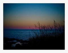 magic hour #1 (kouji fujiwara) Tags: magichour magic hour goldenhour ricohgxr ricoh gxr mounta12 ma12 colorskopar35mmf25 color skopar 35mmf25 seascape sea japan voigtlander landscape landschaft