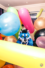 Balloon Party - March-31-2018-2033'50-IMG_8084 (SGT.Tibbs) Tags: 31032018 balloonparty bristolfilton convention furries furry furryculture fursuits hobby holidayinn justfurtheweekend lgbtqia people subculture