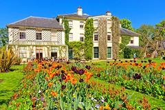 Down House (Geoff Henson) Tags: charlesdarwin science biology geology evolution house garden flowers lawn grass sky sunshine tulips trees