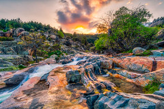 Sunset in the brook (jchmfoto.com) Tags: anochecer crepúsculo dirt dusk españa europa evening landscapes mineral nightfall noche ocaso paisaje paisajes pieda piedra pino plant planta plantas puestadesol puestadelsol roca rocas rocks río suciedad sundown trees twilight árbol árboles comunidaddemadrid es stone rock spain sunset river liked landscape europe manzanareselreal madrid
