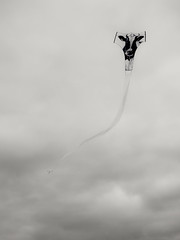 Milking the Clouds (Steve Taylor (Photography)) Tags: cow kite minimalism minimalist contrast lowkey white monochrome blackandwhite newzealand nz southisland canterbury christchurch newbrighton kiteday sky cloud diekuhfliegenlassen toletthecowfly