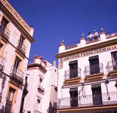Sevilla (funkehlady) Tags: ikonta 53116 superikonta velvia 120mm film sevilla fujivelvia50 6x6 superikonta53116 spain velvia50 mediumformat