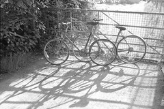 Done pedalling (The_Random_Photographer) Tags: bicycles bikes wheels shadows sunlight gw690 fuji lines gate abandoned unloved