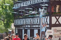 INDUSTRIEMAGNIFIQUE PAPILLONS BACH-105 (MMARCZYK) Tags: france alsace grandest strasbourg 67 place benjamin zix lindustrie magnifique art bach papillon